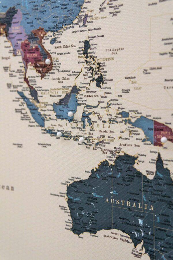 Weltkarte-pinnwand-mit-pins-Weintraube-tripmap