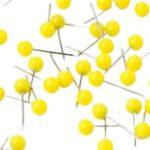 Gelbe Stecknadeln